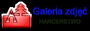 Galeria - Harcerstwo